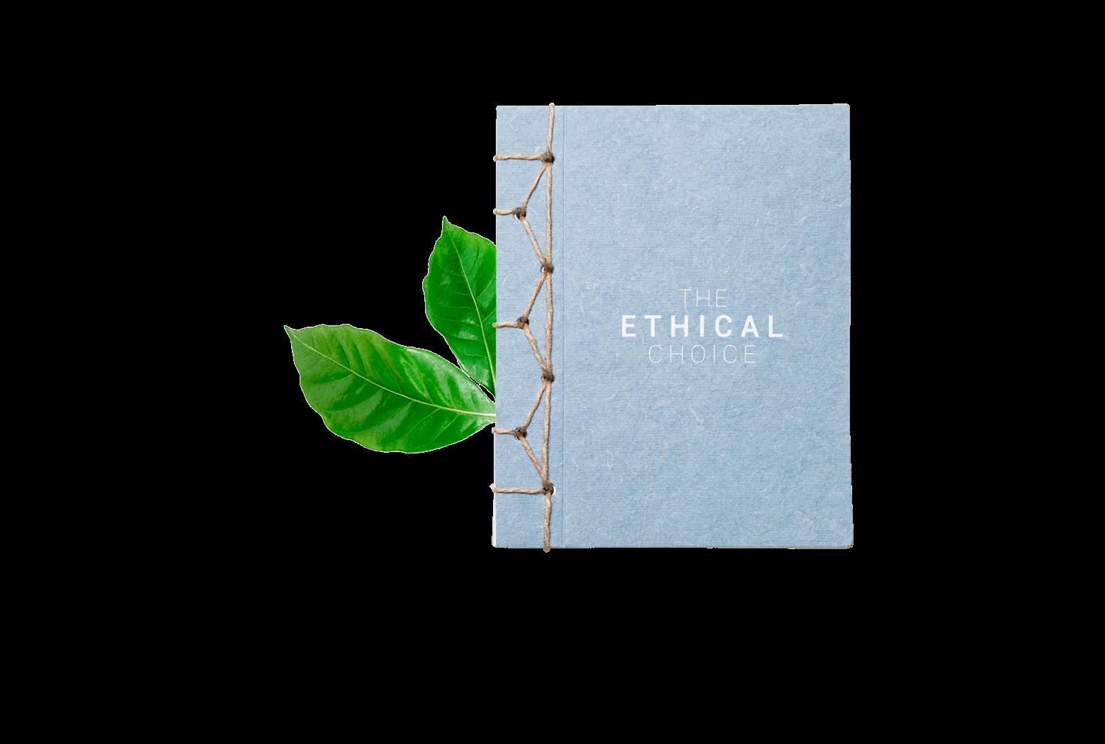 Ethical Choice 1
