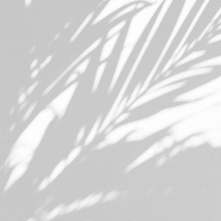 Cadica - into details - 2