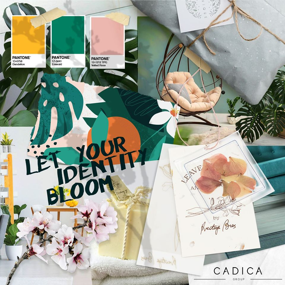 Are you ready to discover the new Cadica Collection AW21-22? Shows program